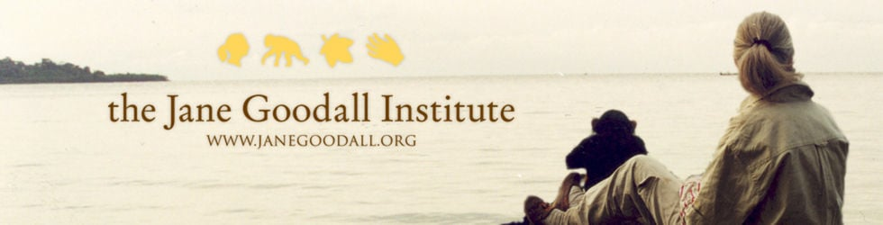 Jane Goodall Institute