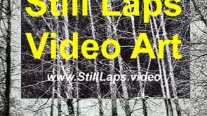 Still Laps - video art