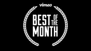 Vimeo Staff Picks: Best of the Month