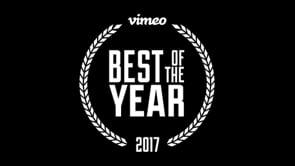 The Best Staff Picks of 2017