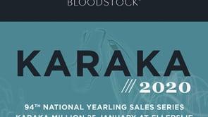 Karaka 2020 - Book 1, Day Three