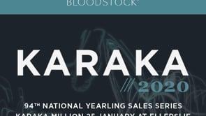Karaka 2020 - Book 3