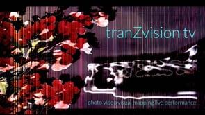 tranZvision.tv