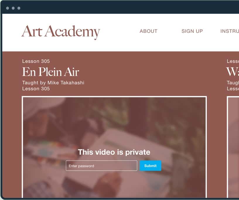 艺术学院网站上的密码保护视频