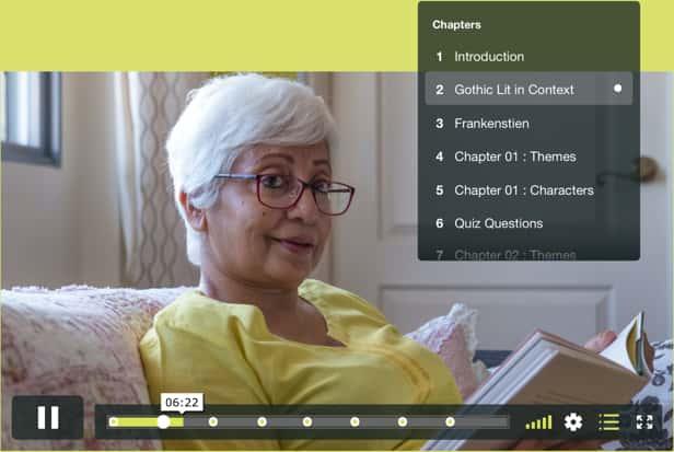 视频备份界面时间戳和章节标题示例