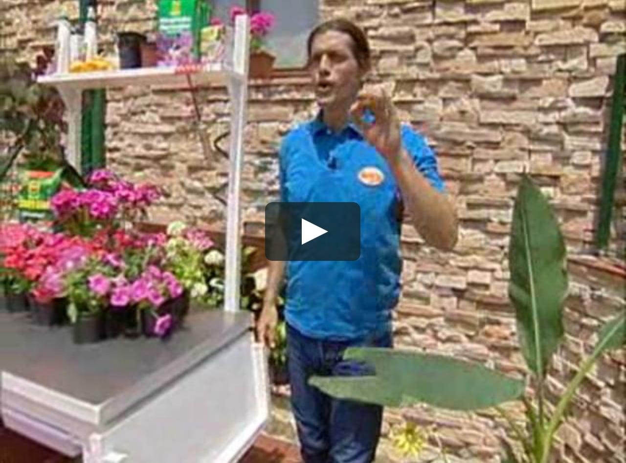 Bricoman a mesa de jardiner a on vimeo - Bricomania jardineria ...