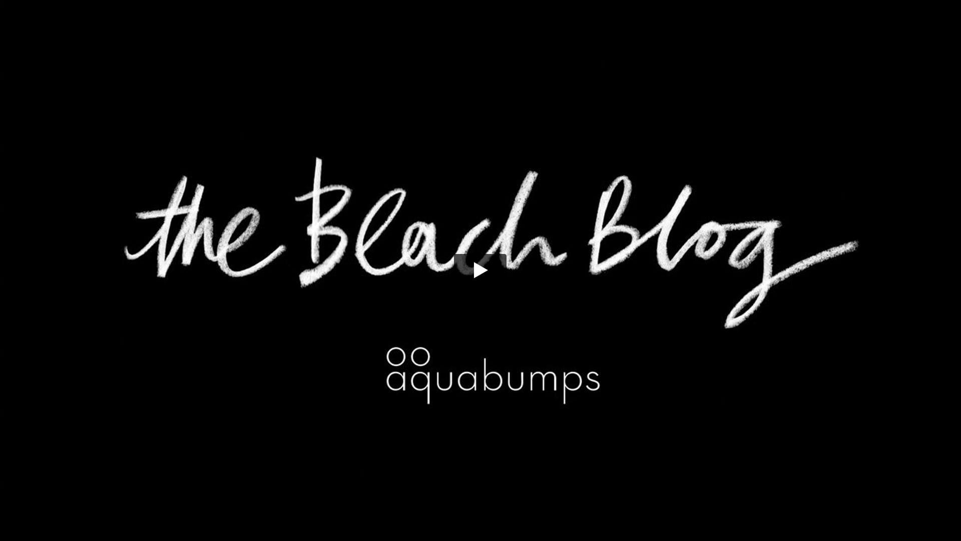 The Beach Blog Video