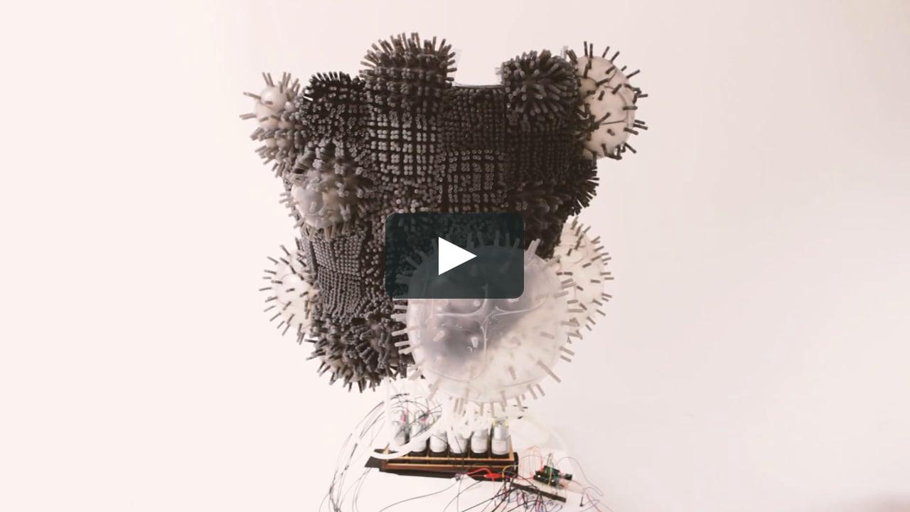 Animus On Vimeo