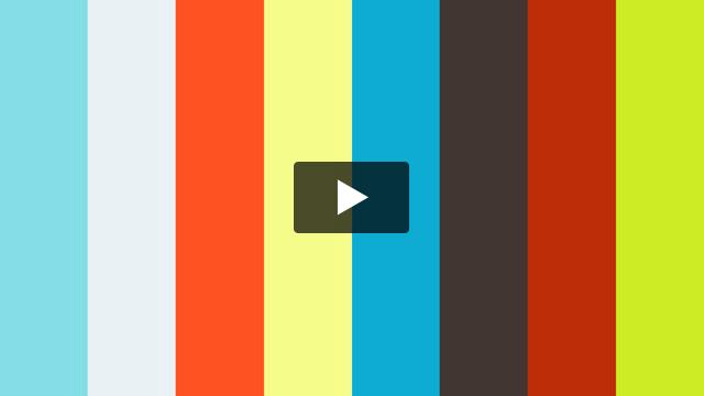 Hawk in a Hockey Rink [Hope TV]
