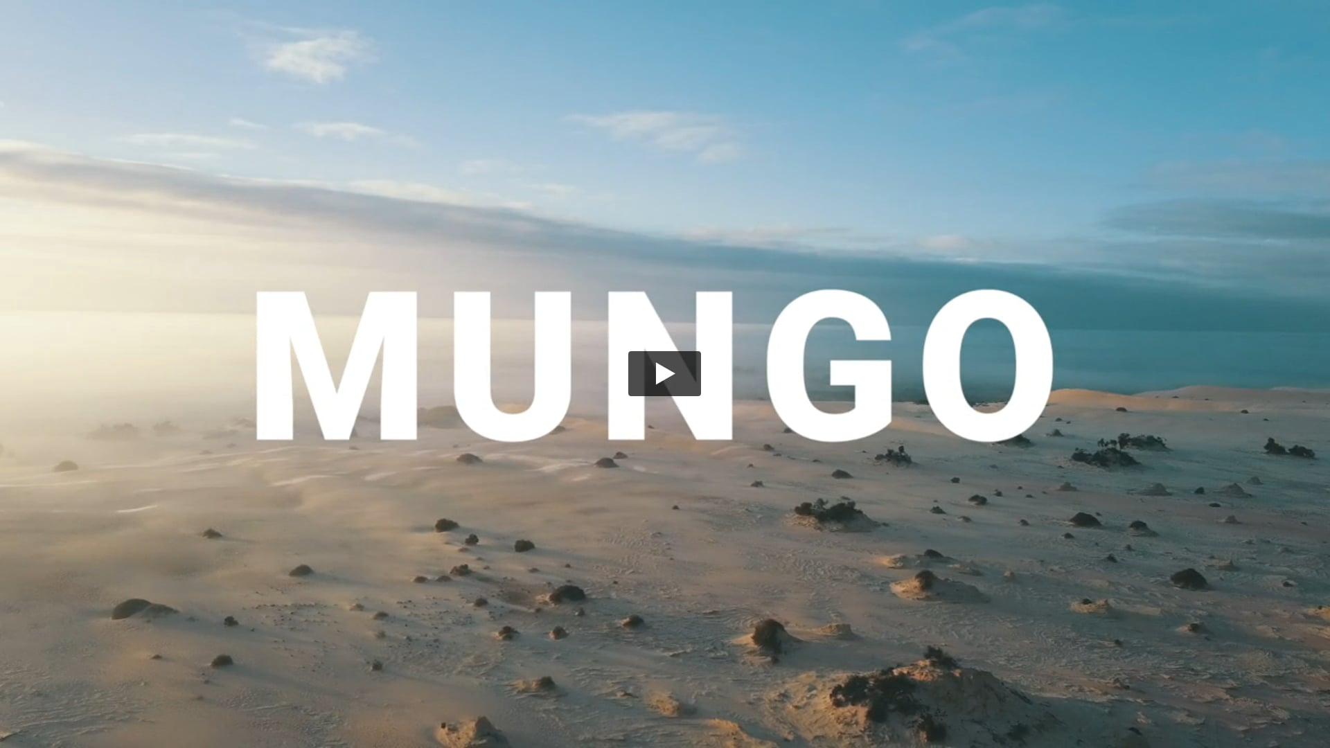 Mungo Fly Around