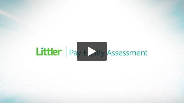 Littler Pay Equity Assessment