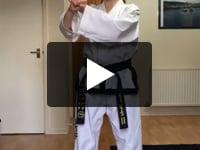3 step sparring 1 & 2