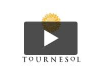 Thumbnail of Tournesol