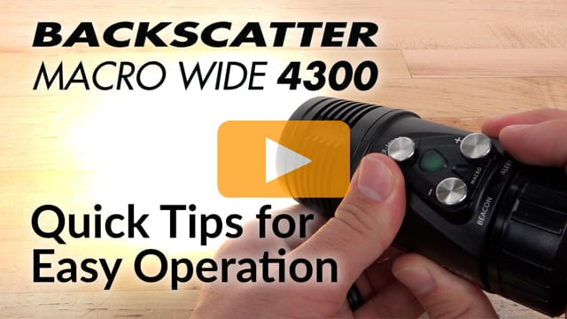 Quick Tips For Easy Light Control | Macro Wide 4300 Video Light