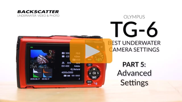 Olympus TG-6 | Advanced Settings | Best Underwater Camera Settings: Part 5