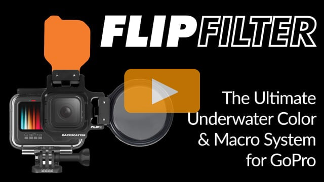 GoPro with FLIP Filters | The Best Underwater Color Filter and Macro for GoPro