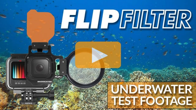 GoPro with FLIP Filters | Underwater Color Filter Video Test Footage