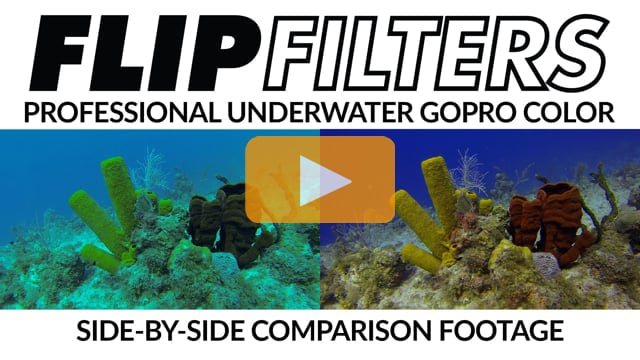 FLIP Filters | Professional Underwater Color Filters for GoPro