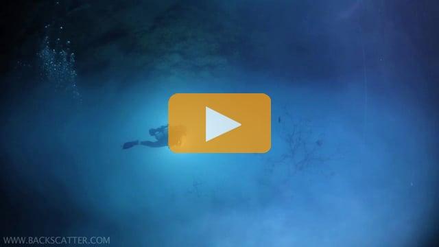Cenotes Mexico - Canon 5D Mark III Underwater Video