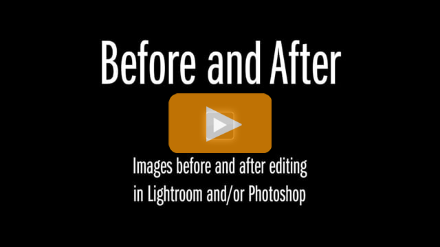 Lightroom and Photoshop: Before and After by Go Ask Erin