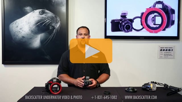 Underwater Housing Review: The Olympus E-PM1 Camera & Housing Bundle