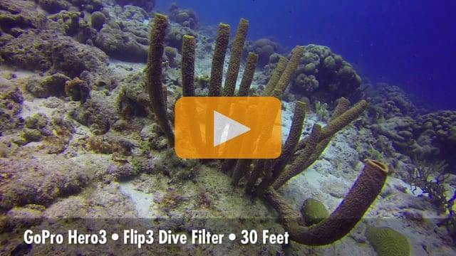 GoPro Flip3 Dive & Deep Tests - 2013 Digital Shootout in Bonaire