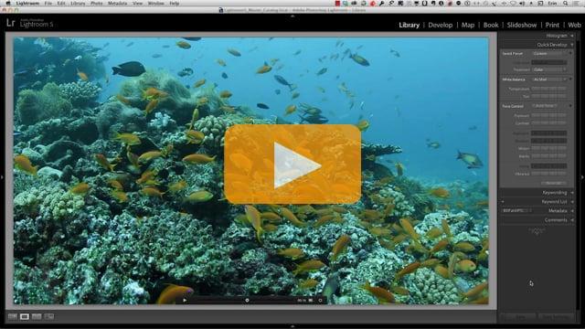 Lightroom 5 Tutorial - Video Editing