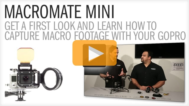MACROMATE MINI First Look and Details