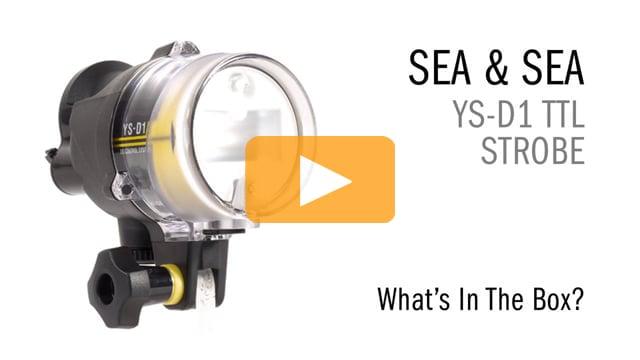 Sea & Sea YS-D1 TTL Strobe - What's in the Box?