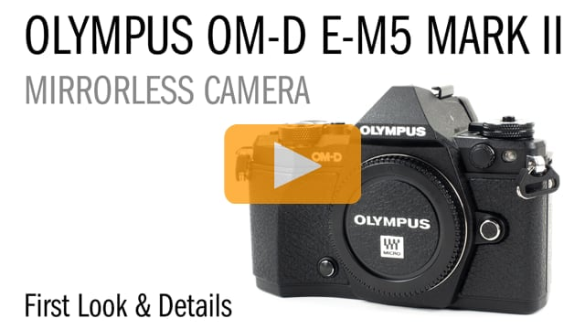 Olympus EM-5 Mark II Underwater Photo & Video Review - First Look and Details