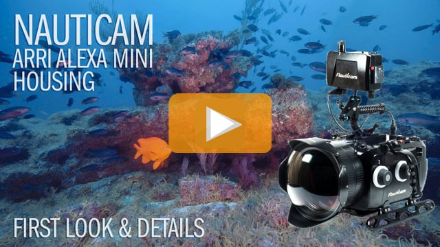 Nauticam Arri Alexa Mini - Underwater Cinema System Review