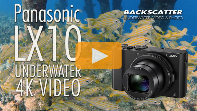 Panasonic LX10 4K Underwater Test Footage