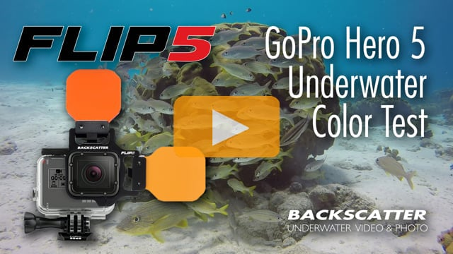 FLIP5 5 for GoPro Hero 5 - Underwater Color Test