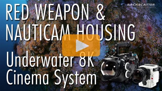 RED Weapon & Nauticam Housing - Underwater 8K Cinema System Review