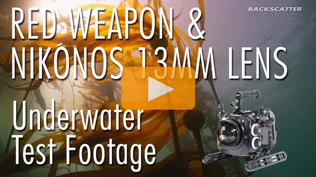 RED Weapon 8K with Nikonos RS 13mm Lens - Underwater Test Footage