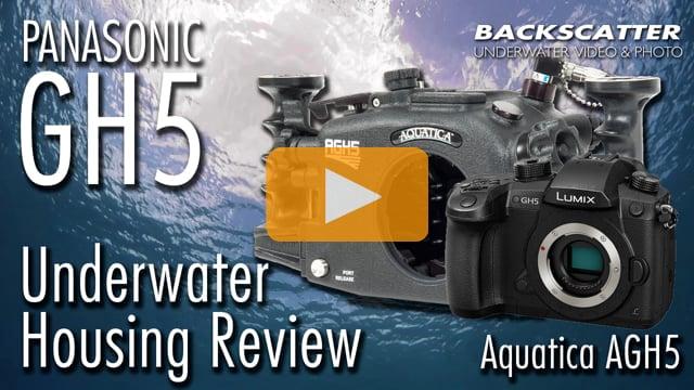Panasonic GH5 Underwater Housing Review - Aquatica AGH5