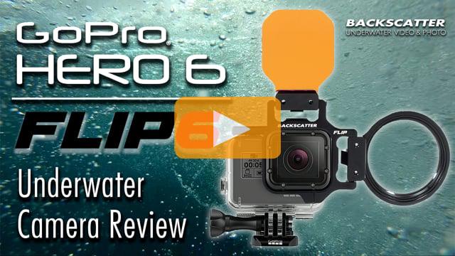 GoPro HERO 6 vs. HERO 5 Underwater Camera Test