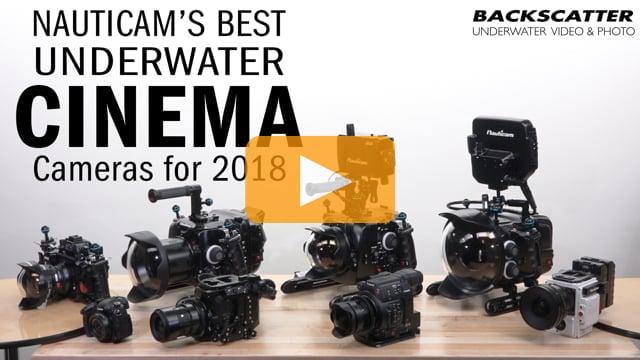 Nauticams Best Underwater Cinema Cameras for 2018