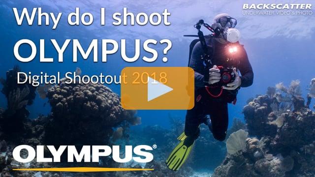 Why do I shoot Olympus? - Digital Shootout 2018