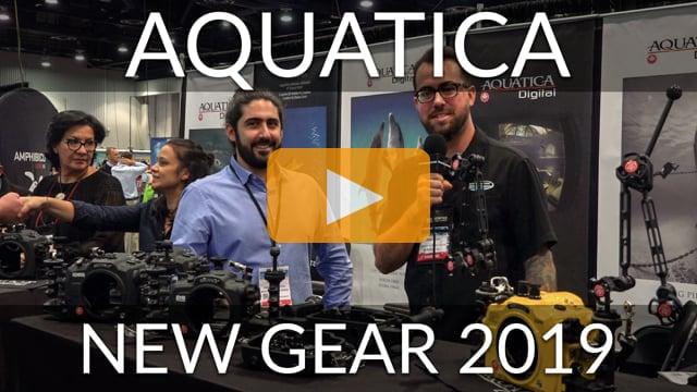 Aquatica - New Gear 2019