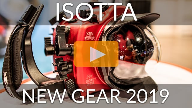 Isotta - New Gear 2019
