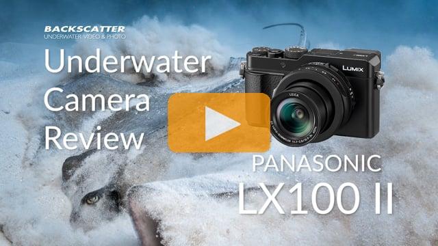 Panasonic LX100 II Underwater Camera Review