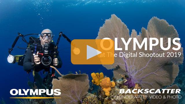 Olympus at The Digital Shootout 2019