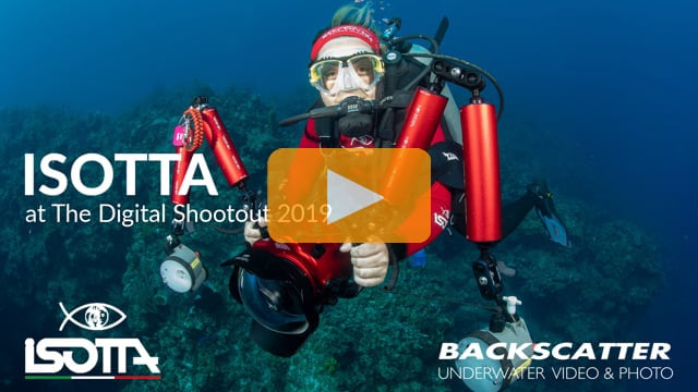 Isotta at The Digital Shootout 2019