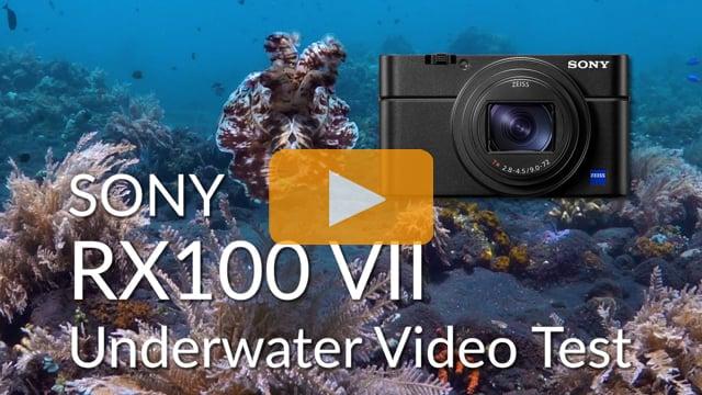 Sony RX100 VII Underwater Video Test