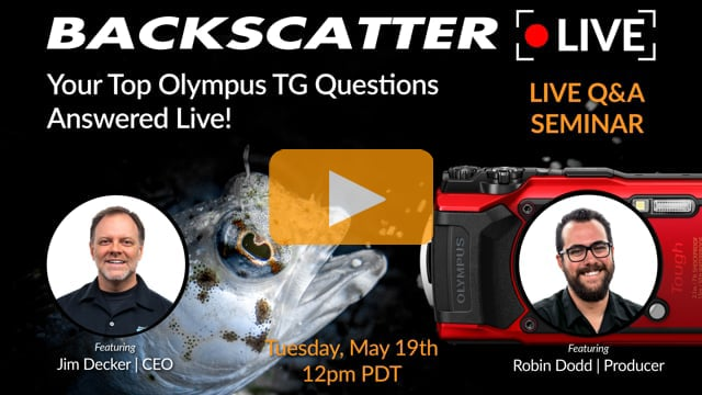 Your Top Olympus TG Questions Answered LIVE [Recorded Live] May 19 2020