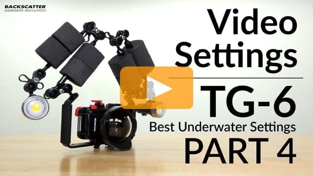 Olympus TG-6 | Best Underwater Camera Settings | Part 4 - Video Settings