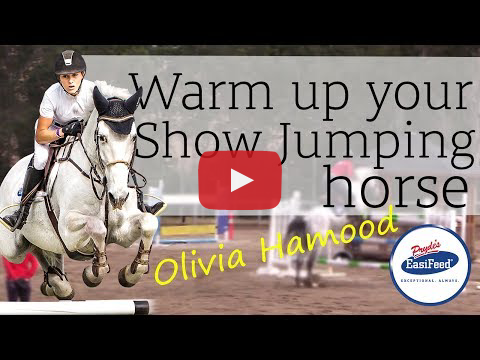 Video Warm up your showjumping horse