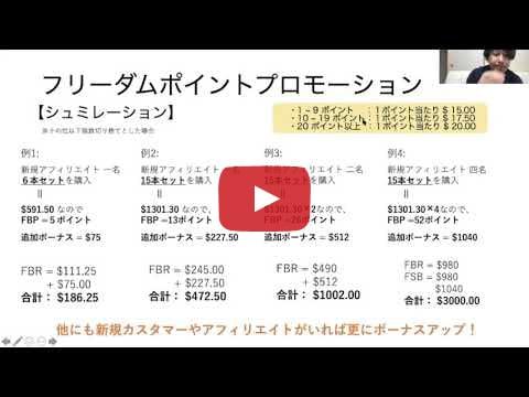 フリーダムプロモーションの説明動画