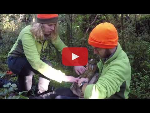 Working on Anchor Island video by Otis Berard